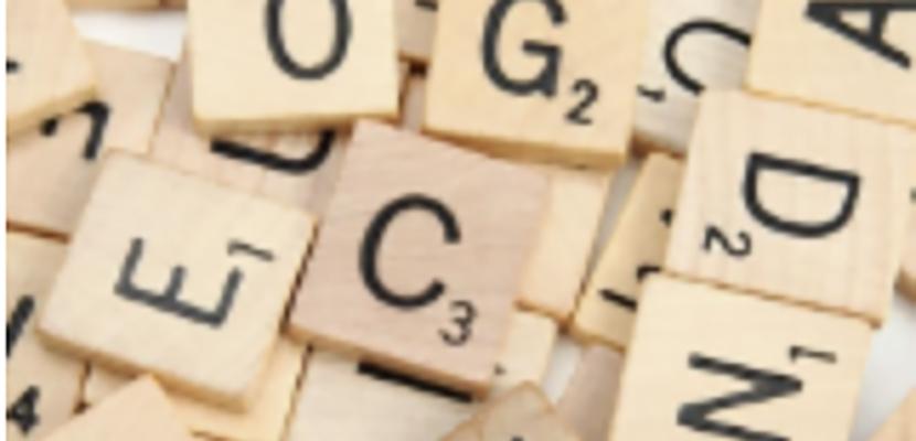 E-learnings Inburgering en Vaktaal voor statushouders en ongeletterden